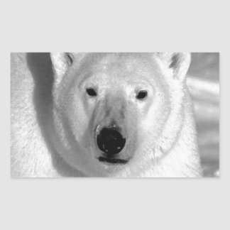 Oso polar negro y blanco rectangular altavoces