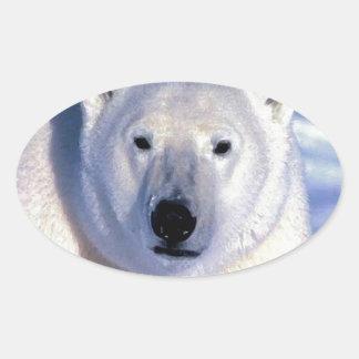 Oso polar calcomanía de oval