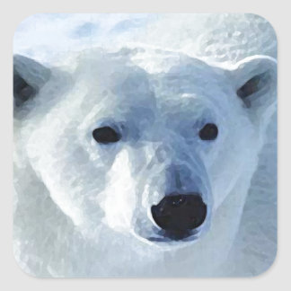 Oso polar calcomanias cuadradas