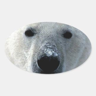 Oso polar colcomanias oval