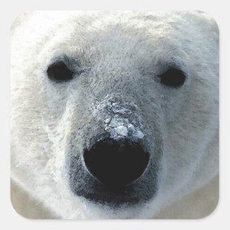 Oso polar colcomanias cuadradas personalizadas