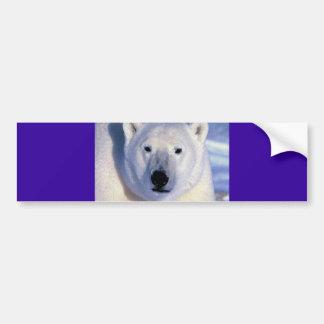 Oso polar pegatina para auto