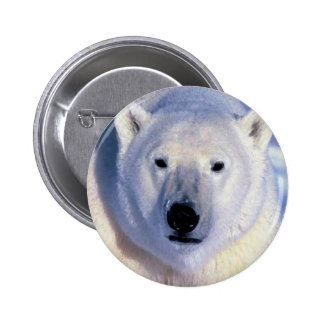 Oso polar pin redondo de 2 pulgadas