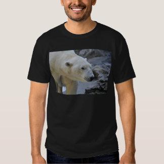 Oso polar playeras