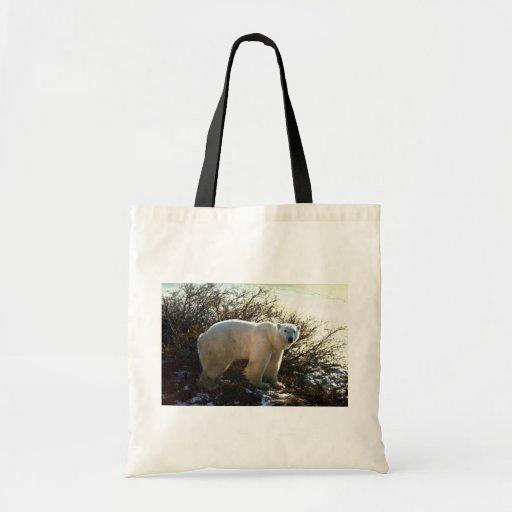 Oso polar por el sauce de la tundra bolsas lienzo