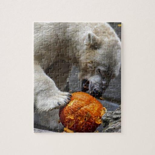 Oso polar que come una calabaza rompecabeza