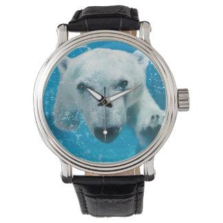 Oso polar que nada reloj