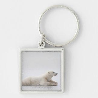 Oso polar que pone en un lago del hielo llavero cuadrado plateado