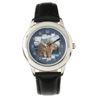 Oso polar relojes