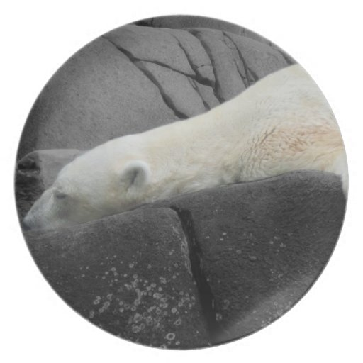 Oso polar soñoliento plato para fiesta