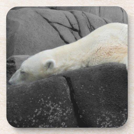 Oso polar soñoliento posavasos de bebidas