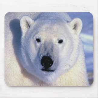 Oso polar tapete de raton