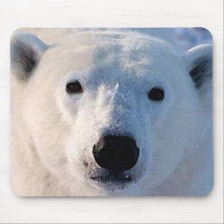 Oso polar tapete de ratones