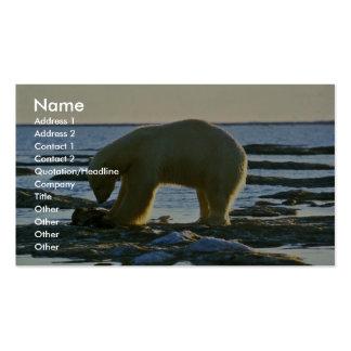 Oso polar tarjeta de visita