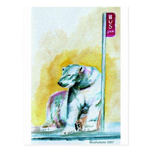 oso polar tarjeta postal