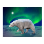 Oso polar tarjetas postales