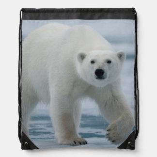 Oso polar, Ursus Maritimus, adulto Mochilas