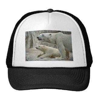 Oso polar y casquillo de la bola de Cub Gorros Bordados