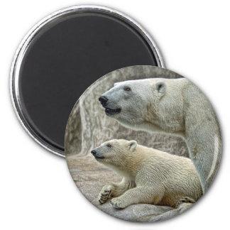 Oso polar y imán de Cub
