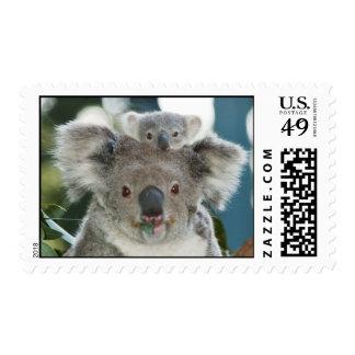 Oso y bebé lindos de koala estampilla