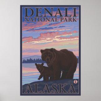 Oso y Cub - parque nacional de Denali, Alaska Posters