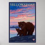 Oso y parque nacional de Cub - de Yellowstone Impresiones