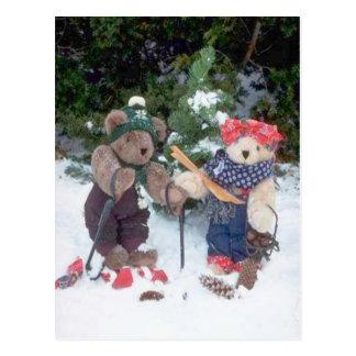 Osos de esquí tarjeta postal