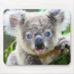 Osos de koala tapete de ratones