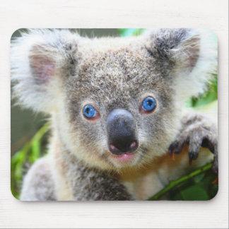 Osos de koala tapetes de raton