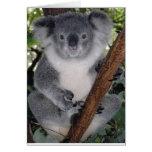 Osos de koala tarjeta de felicitación