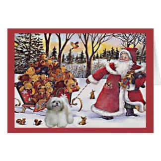 Osos de Santa de la tarjeta de Navidad de Shih Tzu