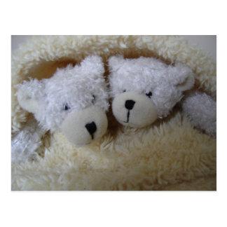 osos gemelos del aviso del bebé en una manta tarjetas postales