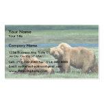 Osos grizzly tarjetas de visita