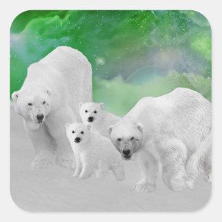Osos polares, cachorros y aurora boreal colcomanias cuadradas