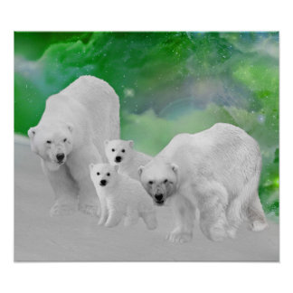 Osos polares, cachorros y aurora boreal póster