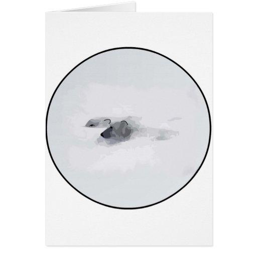 Osos polares en una ventisca tarjetas