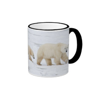 Osos polares femeninos y dos cachorros 2 taza de dos colores