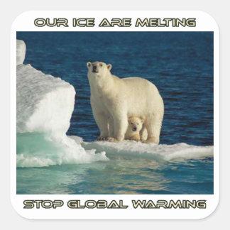 osos polares frescos contra diseños del pegatina cuadrada