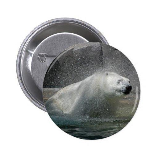 Osos polares pins