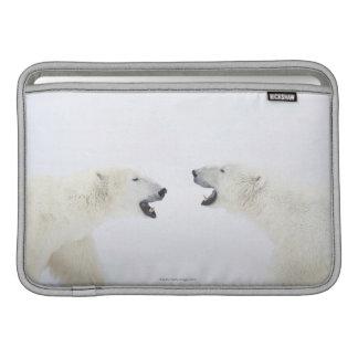 Osos polares que se colocan en nieve después de ju funda macbook air