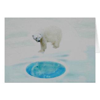 Osos polares solamente felicitación