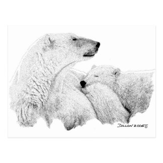 Osos polares tarjeta postal