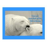 Osos polares te amo más….Diseño Tarjetas Postales