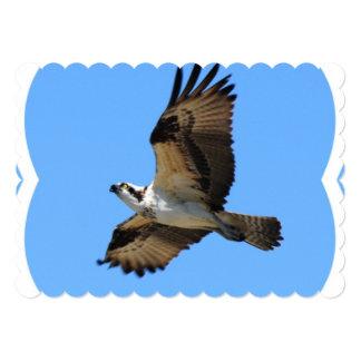 osprey-2.jpg 5x7 paper invitation card