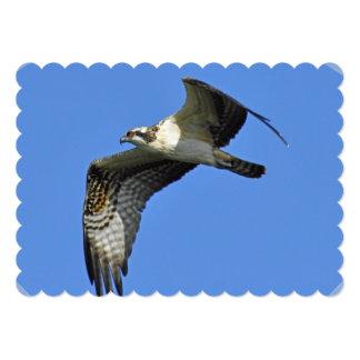 osprey-44.jpg 5x7 paper invitation card