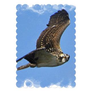 osprey-45.jpg 5x7 paper invitation card