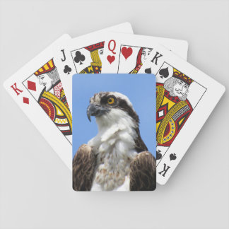 Osprey (4964) Playing Cards