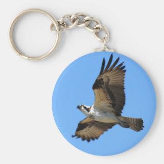 Osprey Bird Keychain