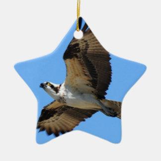 Osprey Bird Ornament
