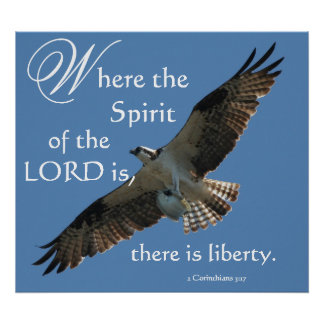 Osprey Bird Spirit of the LORD Print
